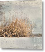 The Music Of Nature Metal Print