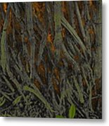 The Mystery Of Surface Roots Metal Print