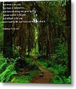 The Narrow Way Metal Print