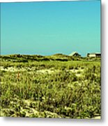 The Nesting Grounds  Metal Print