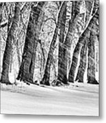 The Noreaster Bw Metal Print