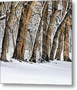 The Noreaster Metal Print by JC Findley