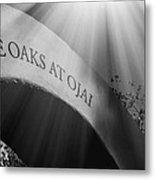 The Oaks At Ojai Metal Print