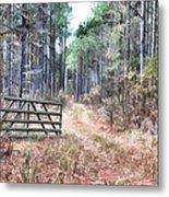 The Old Deer Gate Metal Print