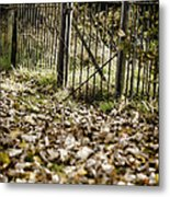 The Old Gate Metal Print