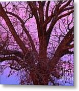 The Old Oak Metal Print