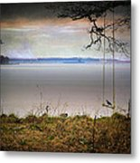 The Old Swing Metal Print