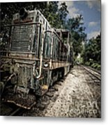 The Old Workhorse Metal Print