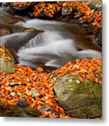 The Orange Stream Metal Print