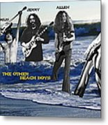 The Other Beach Boys Metal Print