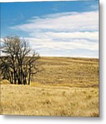 The Other Colorado Metal Print