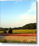 The Other Side Of The Tracks Metal Print