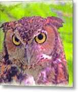 The Owl... Metal Print