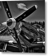 The P-51 Speedball Alice Mustang Metal Print by David Patterson