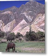 The Painters Palette Jujuy Argentina Metal Print