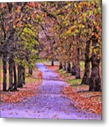 The Park In Autumn Metal Print