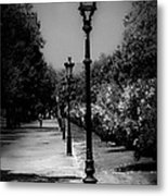 The Path In Nature Metal Print