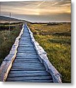 The Path In The Hills Metal Print