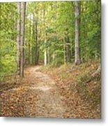 The Path Less Traveled Metal Print