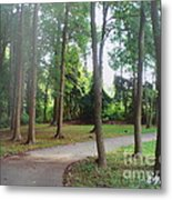 The Path To The Right Direction Metal Print