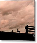 Nature The Peace Of Dusk Metal Print