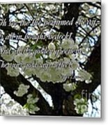 The Perfumed Cherry Tree 2 Metal Print