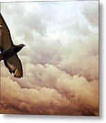 The Pigeon Metal Print