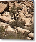 The Pile Is Home Metal Print