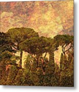 The Pines Of Rome Metal Print