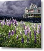 The Pink House In The Lupine Metal Print