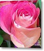 The  Pink Rose Metal Print