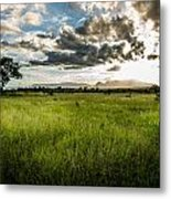 The Plains Of Africa Metal Print