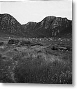 the poison glen and slieve sneacht mountain glenveagh national park dunlewey county Donegal Republic of Ireland Metal Print