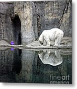 The Polar Bear And The Purple Chair Metal Print