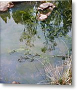 The Pond At The Top Of The Falls Metal Print