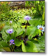 The Pretty Pond And Perfect Petals Metal Print