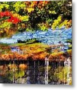 The Private Little Pond Metal Print