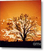 The Promise Of A New Day Metal Print