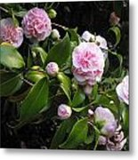 The Promise Of Spring Metal Print