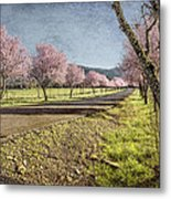 The Promise That Spring Makes Metal Print