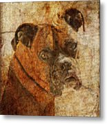 The Question Metal Print by Judy Wood