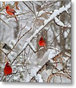 The Quiet Within The Forest Metal Print