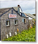 The Quintessential Lobster Experience Metal Print by Michelle Wiarda