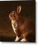 The Rabbit Metal Print