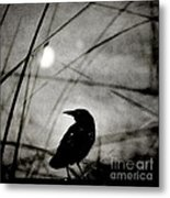 The Raven And The Orb Metal Print