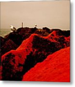 The Red Dawn Metal Print by Sheldon Blackwell