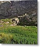 The Red Gully Metal Print