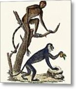 The Red Howler Monkey Metal Print
