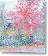 The Red Japanese Maple Tree Metal Print