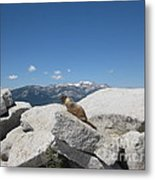 The Resident of Half Dome Metal Print